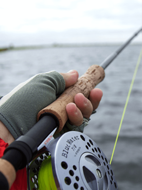 Tiger fishing reel close-up
